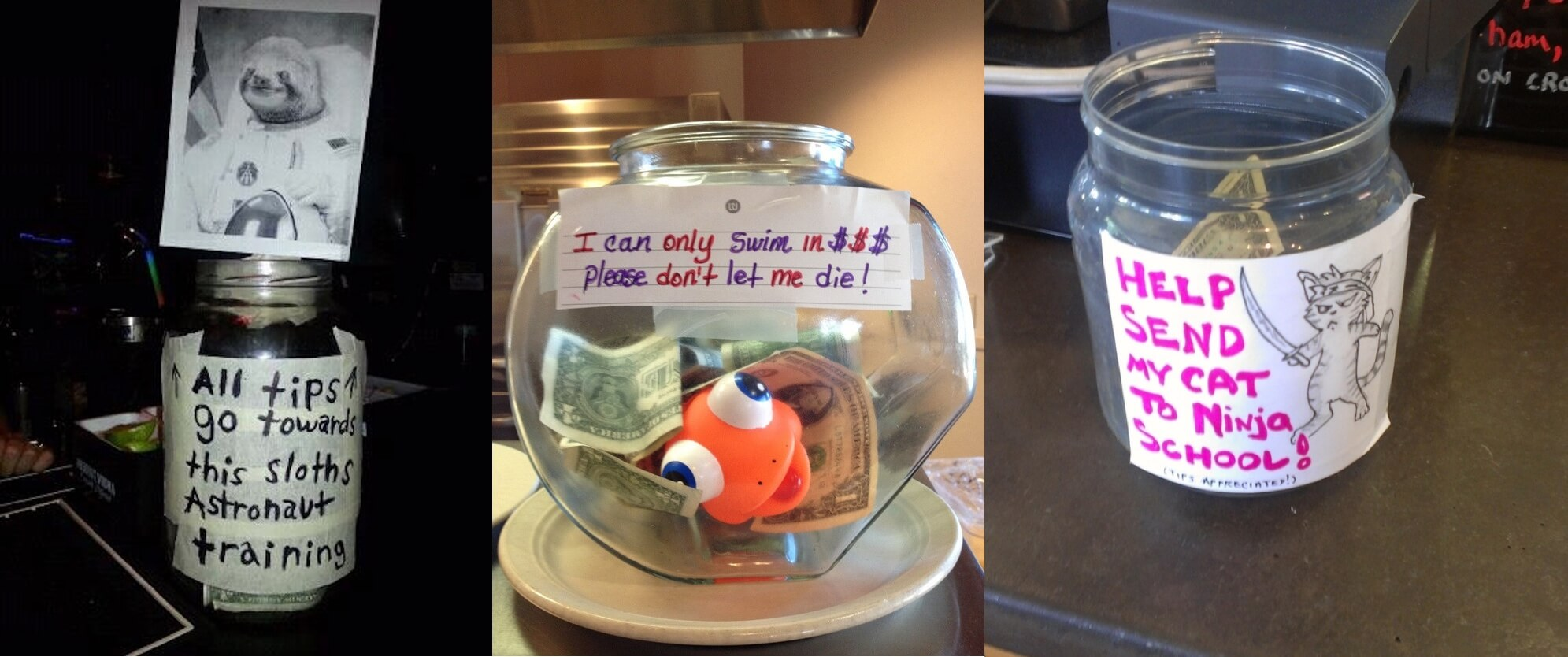 A variety of tip jars in an article about increasing tips.